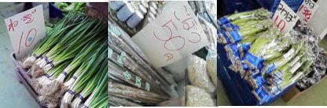 401kaimono.jpg