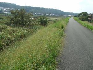 091004浅川1