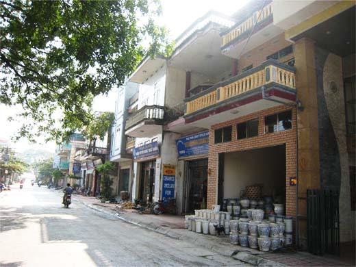 バッチャン村1
