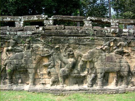 象のテラス2