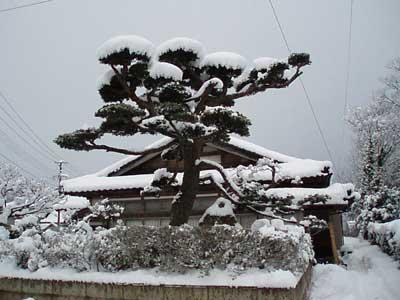 0116大雪の日 002