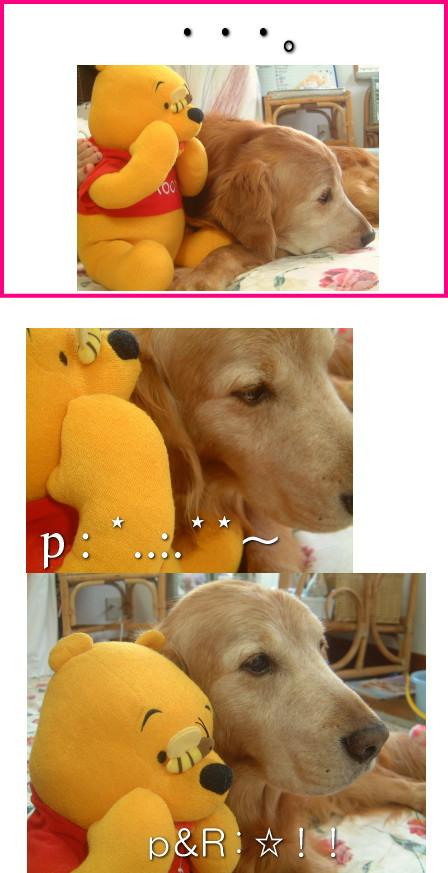 pooh-rocky2.jpg