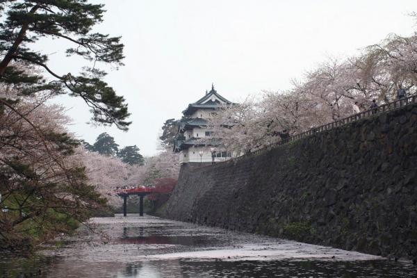 20070504hirosaki10.jpg