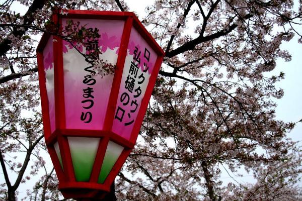 20070504hirosaki1.jpg