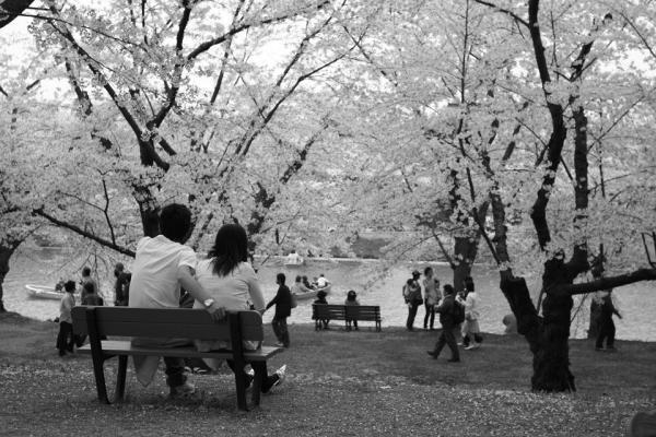 20070504hirosaki4.jpg
