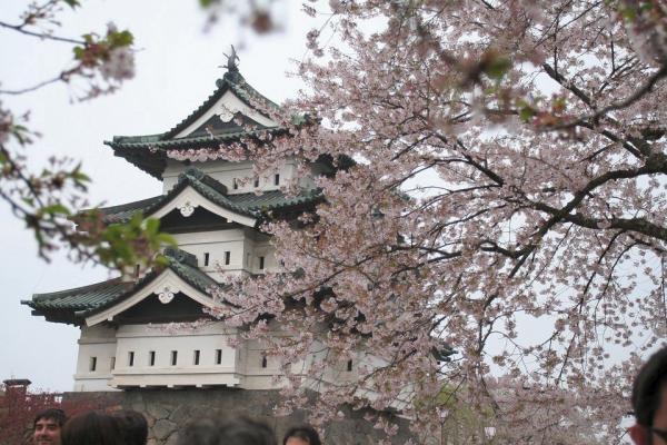 20070504hirosaki6.jpg