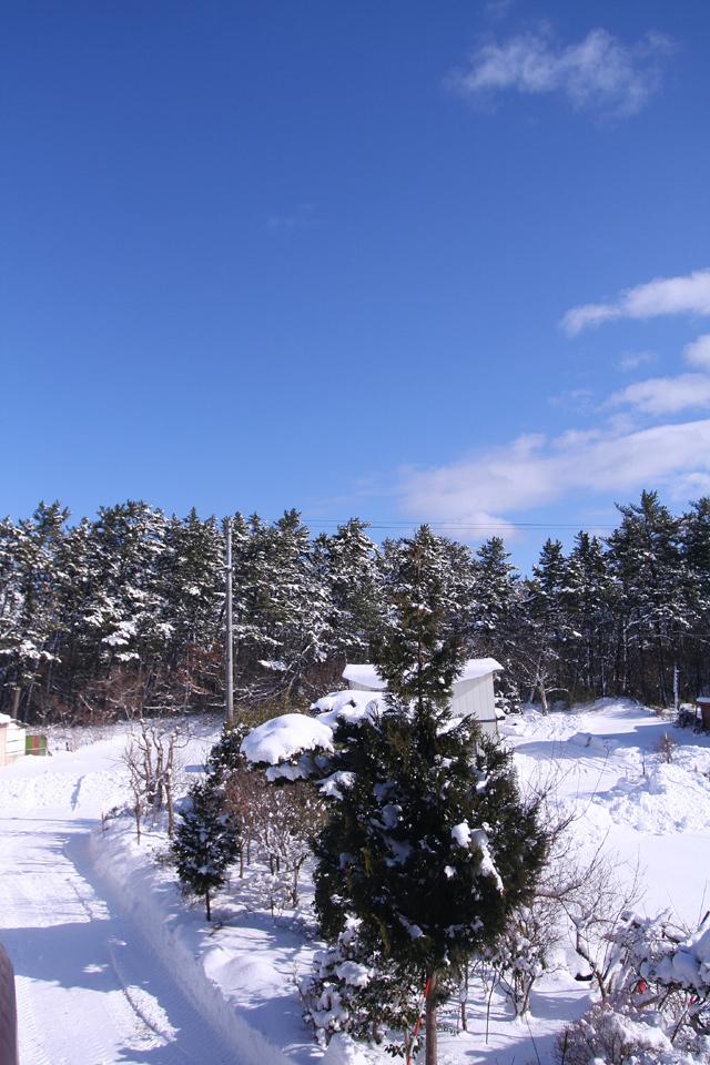 200801photo5.jpg