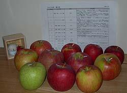 第3回高野りんごの会