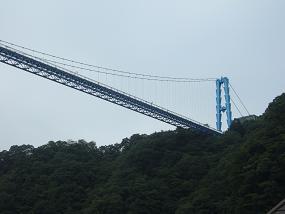 見上げた吊橋