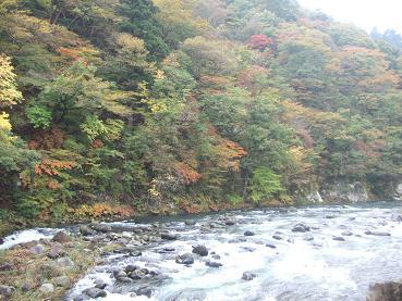 岩の湯付近の紅葉