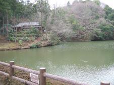 池とお茶処