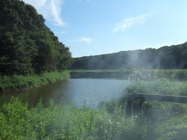 霊が集まる池(おやじの煙草の煙が・・・)