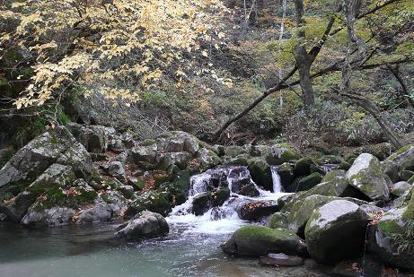 小滝沢キャンプ場付近の花貫渓谷
