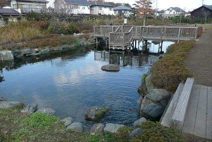 イトヨが生息する公園内の池