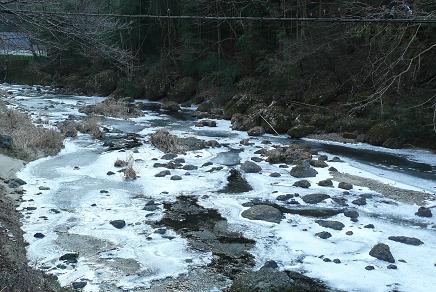 袋田の滝へ向かう途中の滝川も凍結しているのです。(滝見橋から)