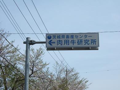 茨城県畜産センター肉用牛研究所の案内