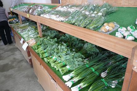 地元の新鮮な野菜の販売