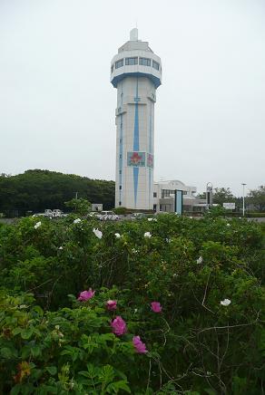 はまなす園からの展望塔