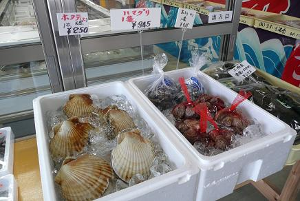 新鮮な貝類の販売