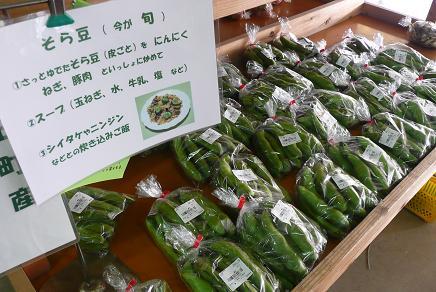 今が旬のそら豆や地元野菜の販売