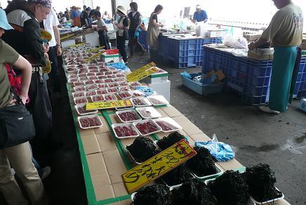 格安な海産物の販売