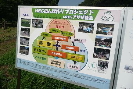 NEC(日本電気㈱とNPO法人アサザ基金no