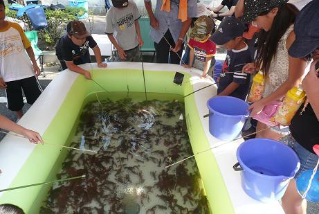 ザリガニ釣りを楽しむ子供達 (1回¥300)
