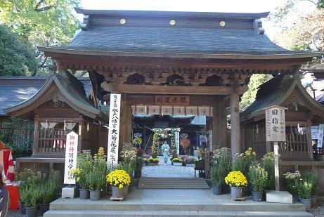 水戸八幡宮楼門