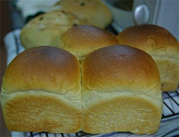 08.6.24パン1
