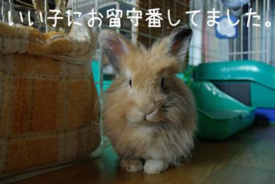 08.9.12究造