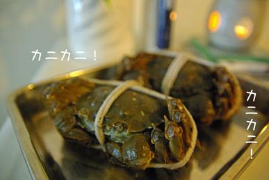 08.11.7上海蟹1