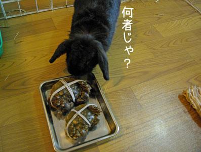 08.11.7くるみ