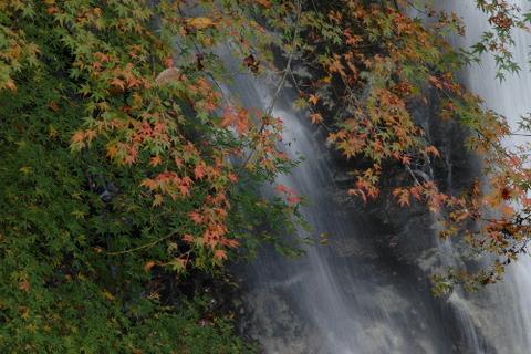 上段の滝口付近