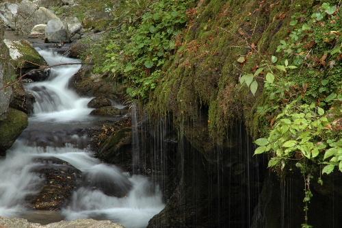 玉すだれの滝と渓流