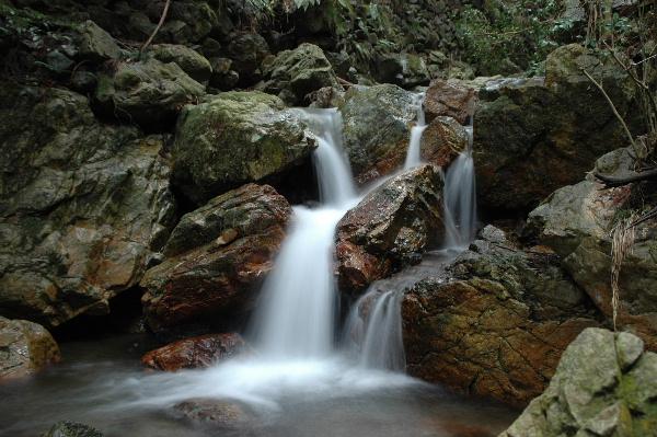 渓流も小さな滝のよう