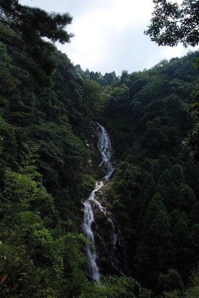 今福の滝遠望