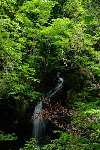 三つ滝その一 水がない(^▽^;)