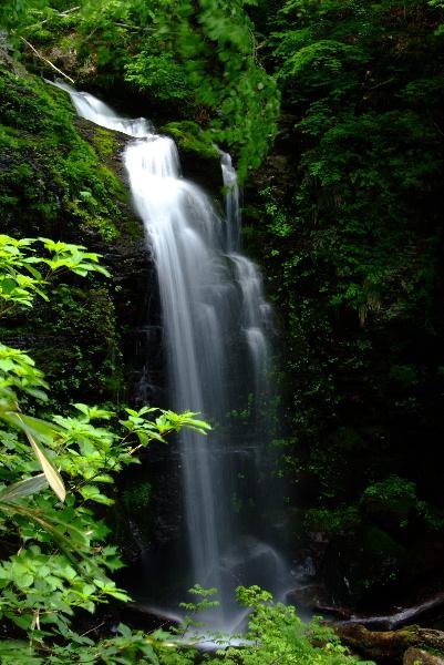 三つ滝その2 美しい立ち姿です