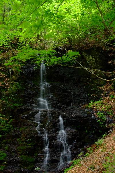 三つ滝その3・・今回はちょっとだけ水がありました