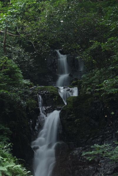 屋敷の滝・・証拠写真です(^_^;)