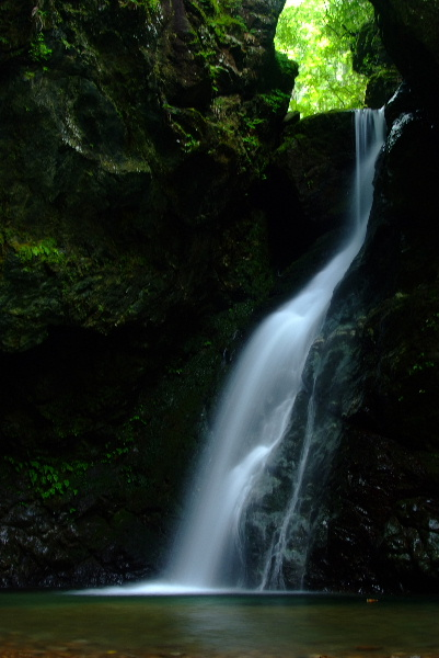 いつもの若杉不動の滝