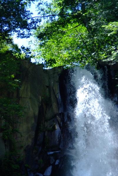 豪快な滝口