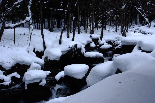 雪を白くて難しい・・(^▽^;)