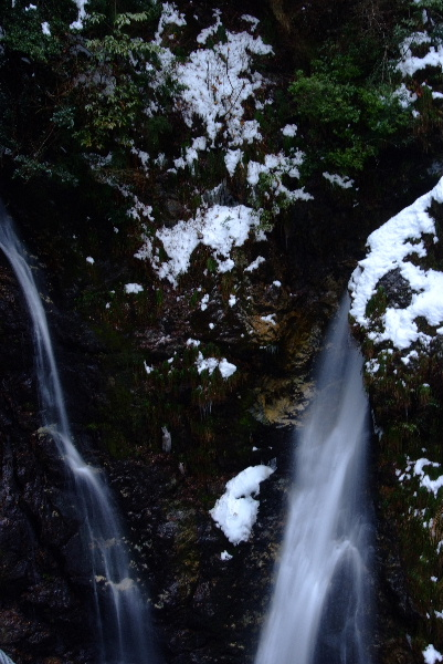 そして横からの滝と合流・・つり橋からはこれが限界