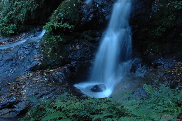 落差1mぐらいのちいさな滝です