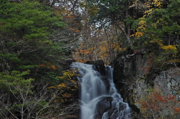 滝左上部、黄葉が見えます