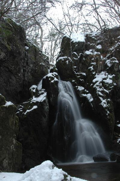 滝上部の木々も真っ白でした