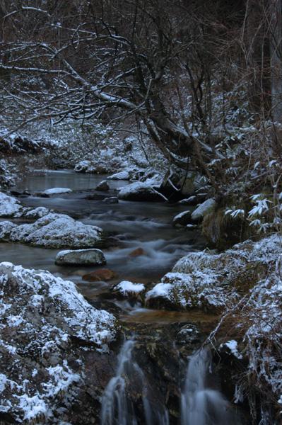 鱒返りの滝へと続く渓谷・・・素敵でした