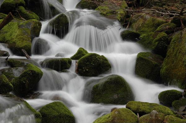 雨滝に向う橋右手の流れ、滝のように高低差があります。