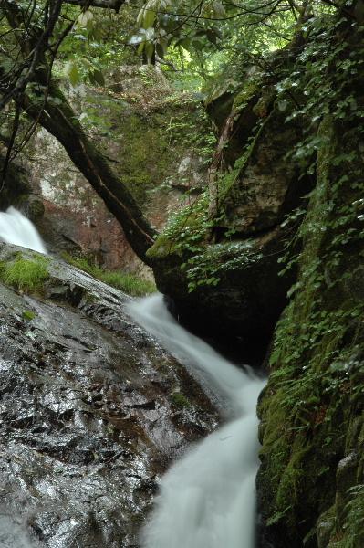 上の滝からの流れ
